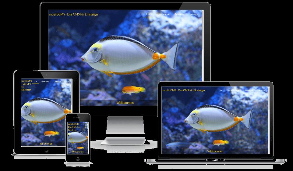 aquarium.png